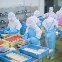 食品加工工場のお仕事